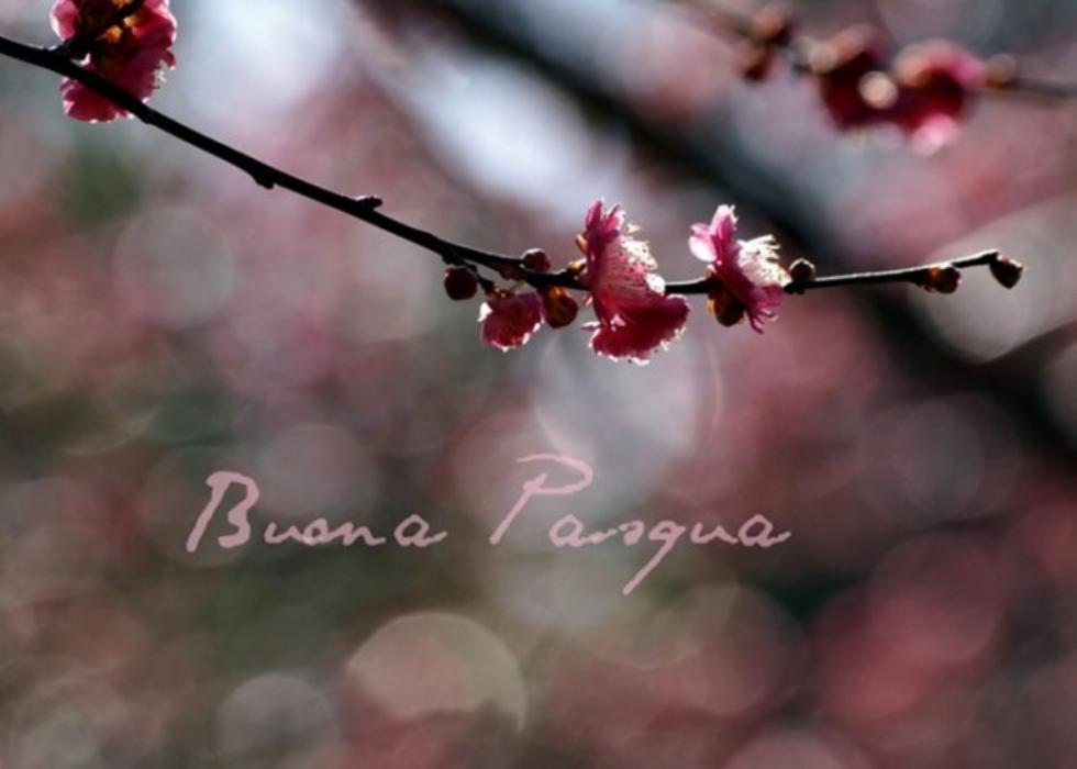 Bonfanti: un augurio di Buona Pasqua ai nostri pensionati, soprattutto ai meno fortunati